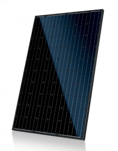Canadian solar CS6P Mono-Allblack 275 watt-piek