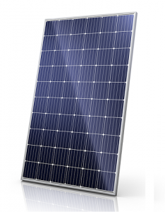 Canadian solar CS6K Percium 295 watt-piek