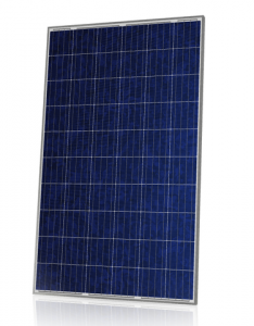 Canadian solar CS6P Poly 265 watt-piek
